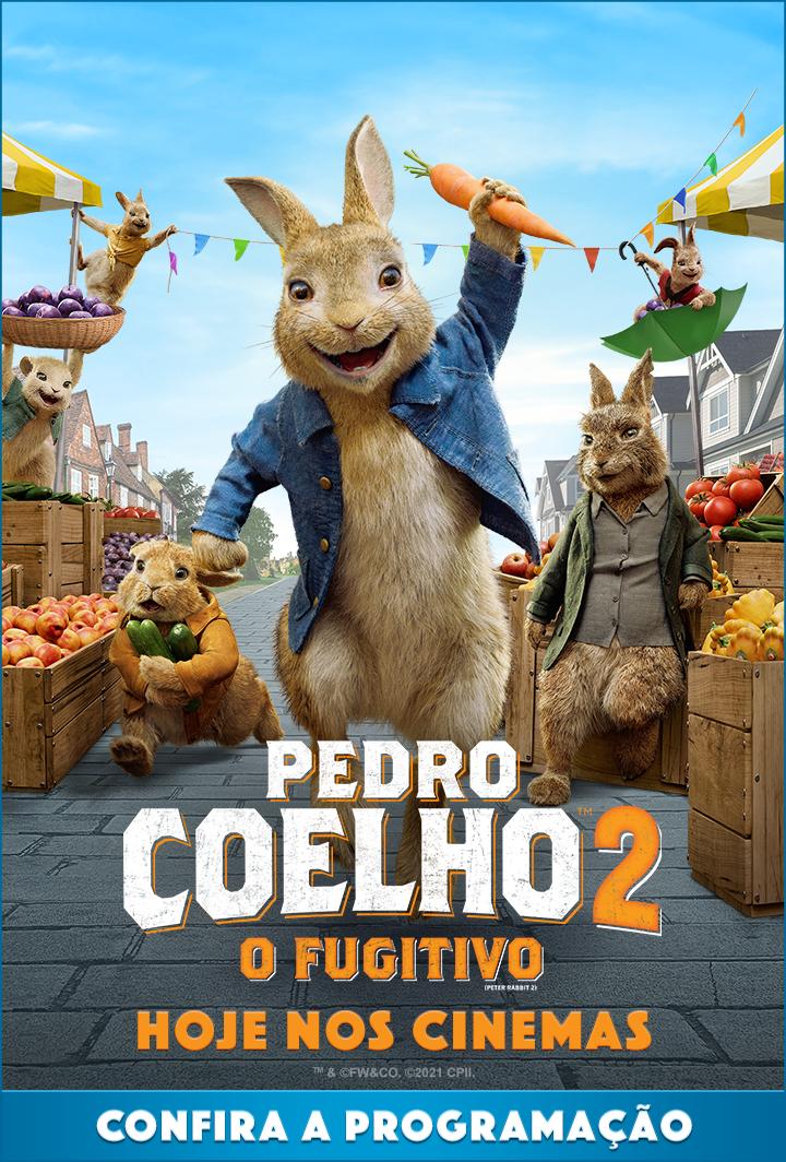 Pedro Coelho 2: